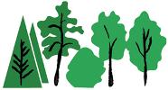 Dansk Træforening
