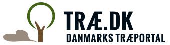 Træ.dk er bred oplysning om træmarkedet - Danmarks Træportal